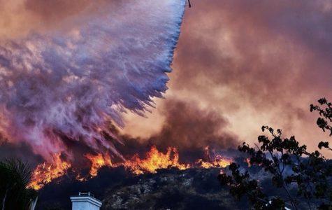 Flickering Flames of California