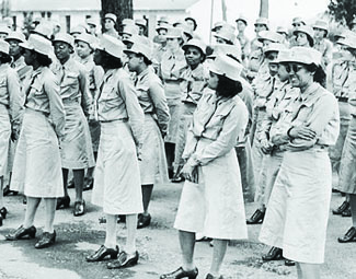 Should Women Be Drafted in the War?