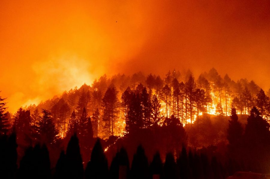 The Glass Fire burns a forest above Silverado Trail in St. Helena, California, on Sunday, September 27, 2020.