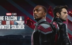 Sebastian Stan and Anthony Mackie star in the Marvel TV show The Falcon and the Winter Soldier.