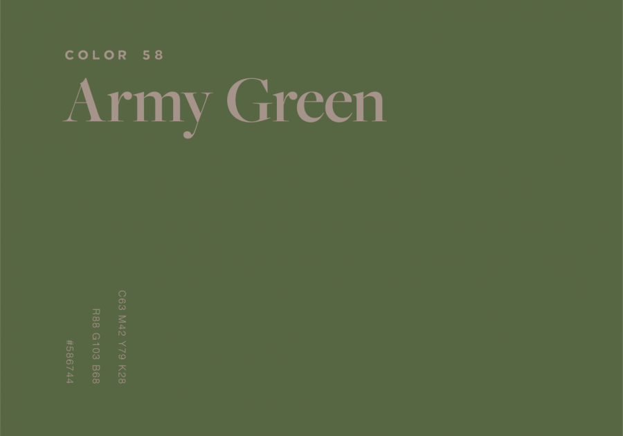 A paint swatch of Army Green